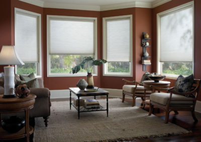Neutral Honeycomb/Cellular Window Coverings in Home Office